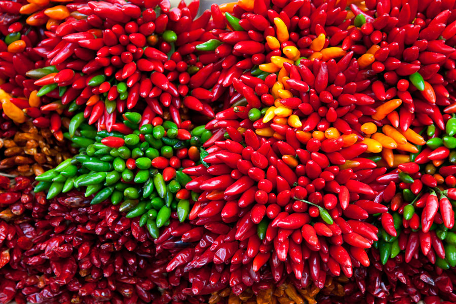 Food - Chilli Photography Essence Images Central Coast