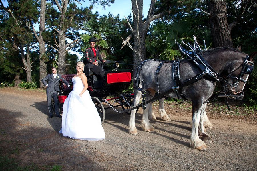 Linton Gardens Wedding Photography Essence Images Central Coast