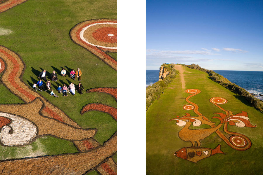 Aerial Photography Essence Images Central Coast